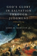 Cover Image: God's Glory in Salvation through Judgment: A Biblical Theology